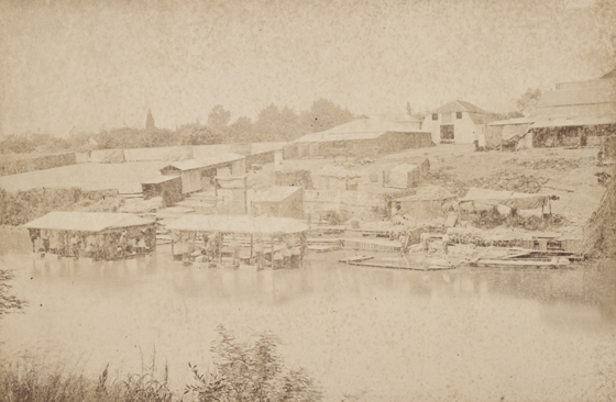 Wool washing on the Yarra. Photograph by Charles Nettleton, courtesy State Library of Victoria.